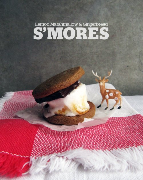 Lemon Gingerbread S'mores // take a megabite