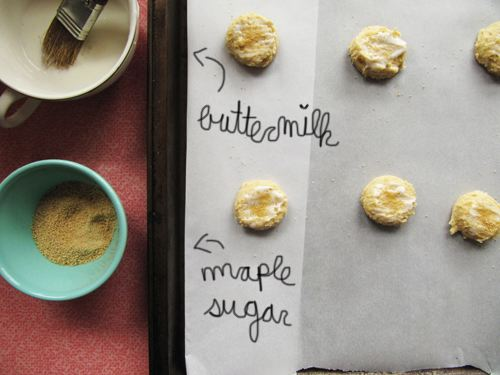 Pancake Sugar Cookies Process // take a megabite
