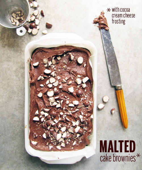 Malted Cake Brownies // take a megabite