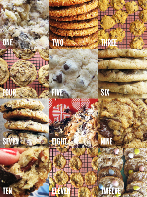 Chocolate Chip Cookies Forever // take a megabite