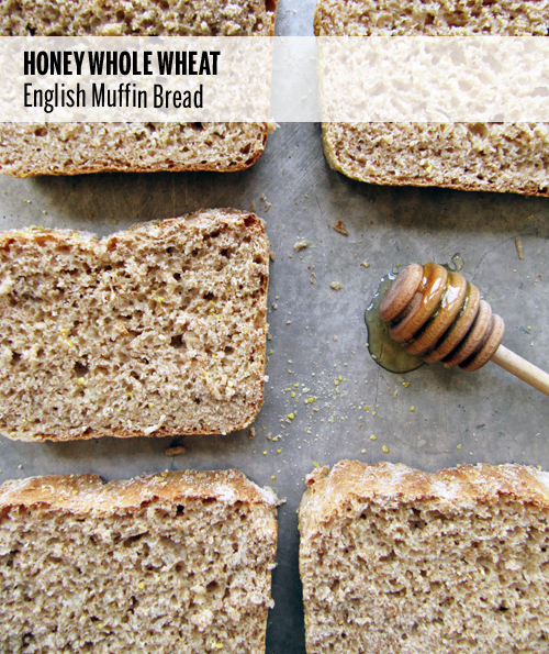 Honey Whole Wheat English Muffin Bread // take a megabite