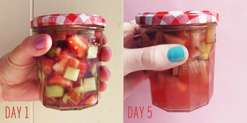 Strawberry Rhubarb Vodka Infusion // take a megabite