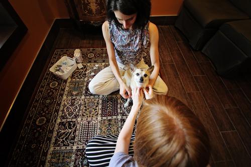 Elliot + Natural Healing Pet Care // take a megabite