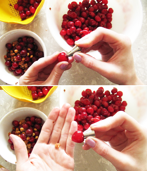 Sour Cherry Pitting // take a megabite