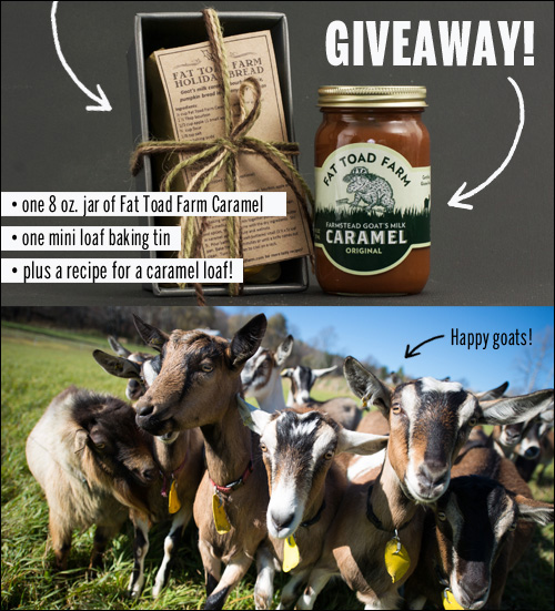 Fat Toad Farm Caramel Giveaway // take a megabite