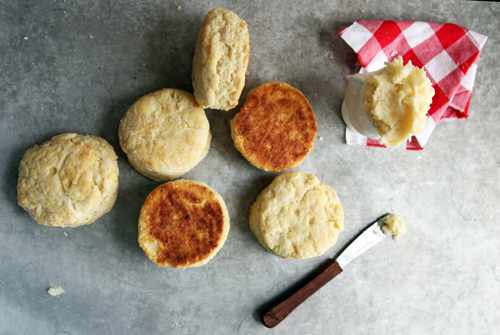 Orange Biscuits // take a megabite