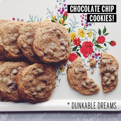 Chocolate Chip Cookies // take a megabite