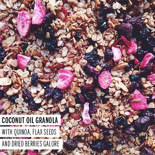 Coconut Oil Granola // take a megabite