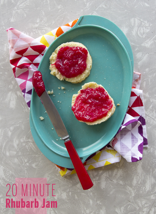 20 Minute Rhubarb Jam // take a megabite