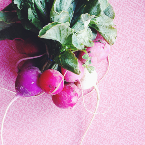 Rainbow radishes  // take a megabite
