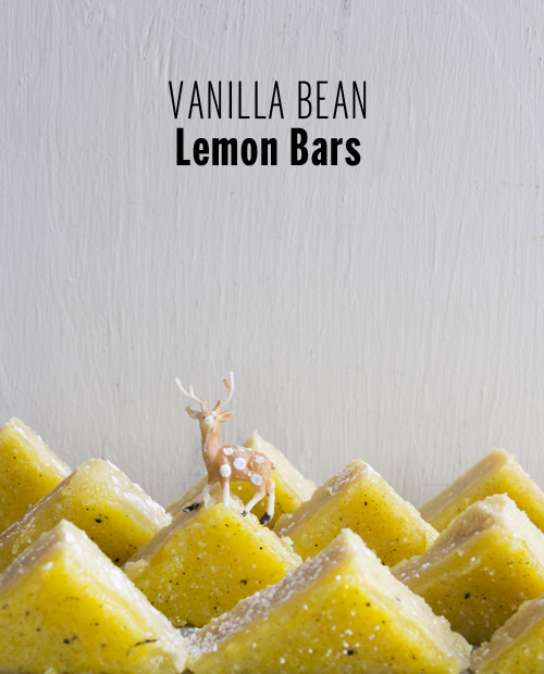 Vanilla Bean Lemon Bars // take a megabite