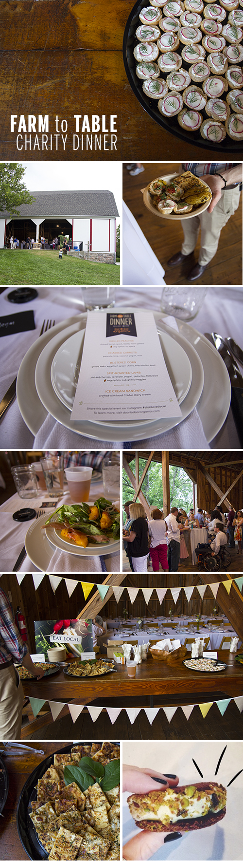 Farm to Table Charity Dinner // take a megabite