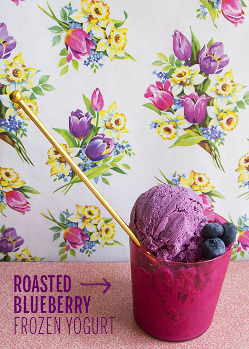 Roasted Blueberry Frozen Yogurt // take a megabite