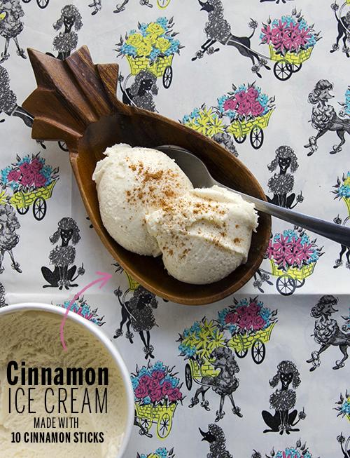 Cinnamon Ice Cream // take a megabite