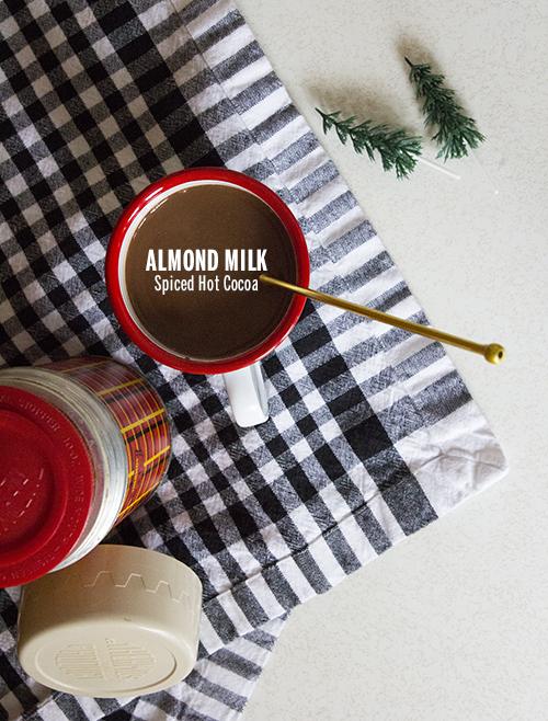 Almond Milk Spiced Hot Cocoa // take a megabite