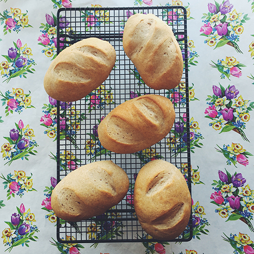 Whole Wheat French Bread Rolls // take a megabite