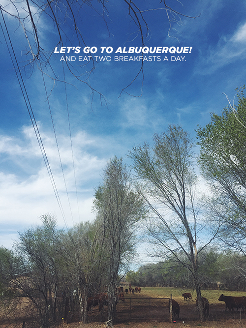 Let's Go To Albuquerque // take a megabite