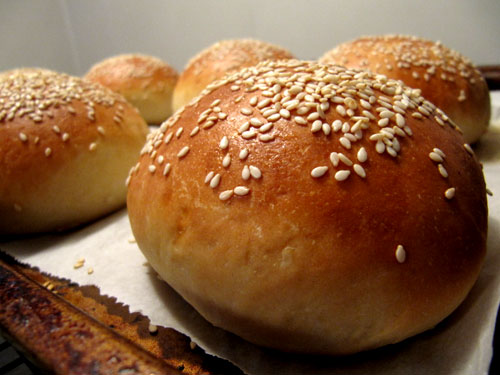 burger buns jpg burger or hot dog buns sesame seed hamburger buns ...